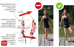 Rééducation Posturo-Dynamique du Sportif - EAD Concept