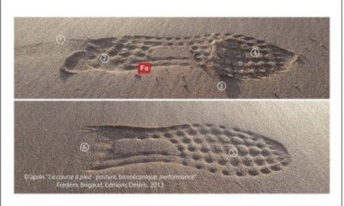 Les Empreintes dans le sable selon les prises d'appui